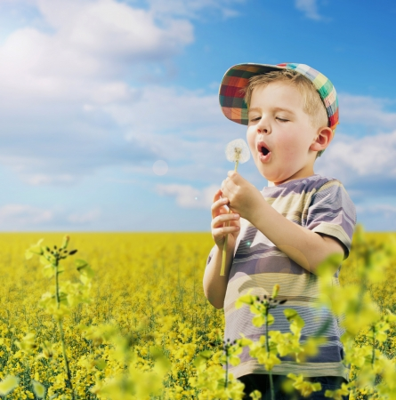 Colorful picture of litle boy on the meadow photo