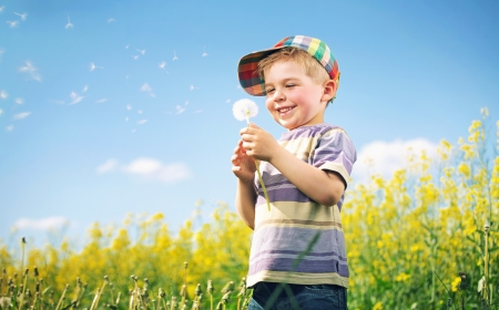 love blow: Colorful picture of kid playing dandelion Stock Photo
