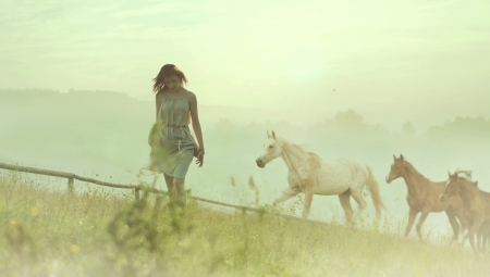 Pretty brunette lady resting among wild horses photo