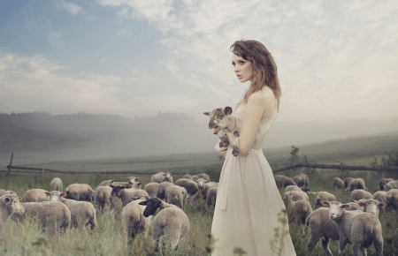 Sensual young lady among sheeps photo