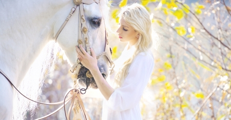 Attractive blonde cute girl touching royal horse photo