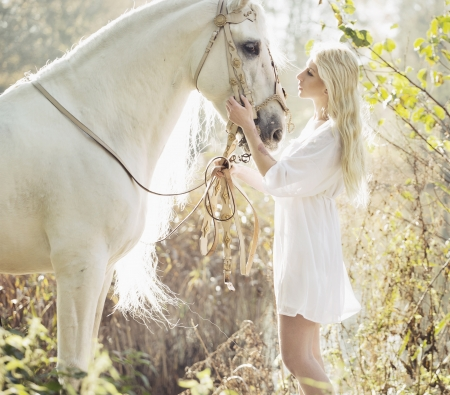 horses in field: Blonde beautiful woman touching mejestic white horse