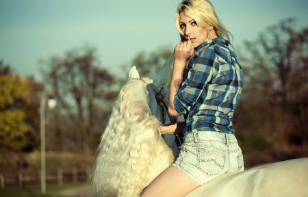 Mystery blonde woman riding a white horse photo