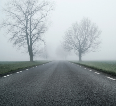 Empty black road at morning autumn day photo