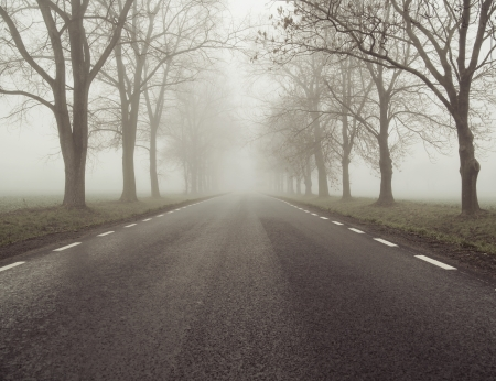 Picture presenting the foggy road photo