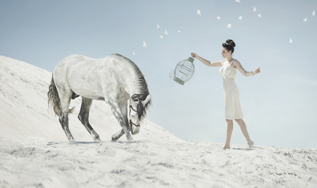 Fine shot of the sensual lady with the white horse photo