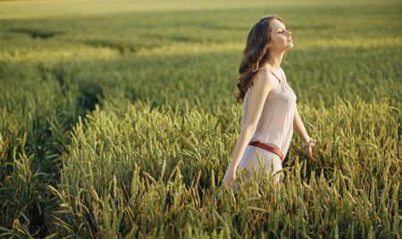 Relaxed woman on the green corn field photo