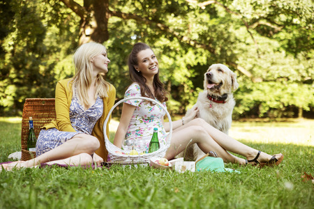 picnic blanket: Two girlfriends with dog on the summer picnic