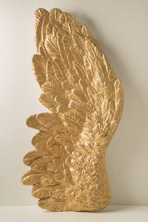 bird feathers: Huge wing with the golden feathers