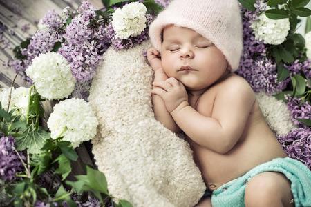ładny chłopiec śpi wśród pachnących kwiatów