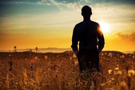 Businessman silhouette among the golden corn