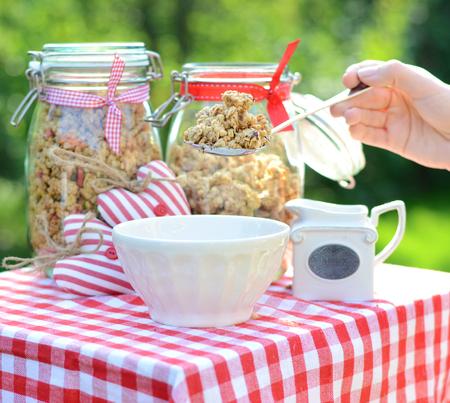 breakfast garden: Tasty breakfast in the green, summer garden