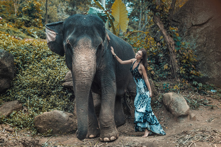 huge: Pretty young woman cuddling an elephant Stock Photo
