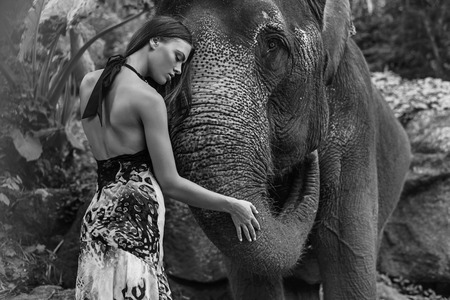 large: Black&white portrait of a model hugging an elephant Stock Photo