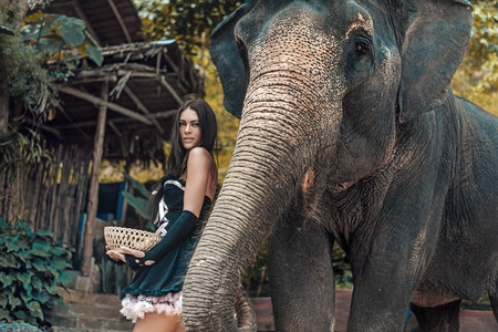 large: Pretty, young woman with an elephant Stock Photo
