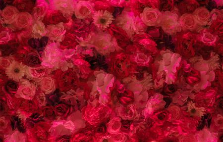 Image of a red flower wall Archivio Fotografico