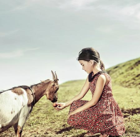 Ragazza calma e allegra che alimenta una capra Archivio Fotografico