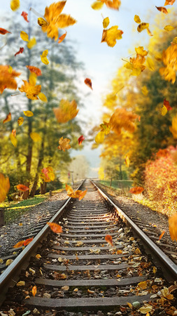 Colorful, autumn leaves falling down on railway tracks