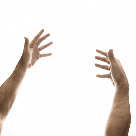 Two male hands on an empty, white background