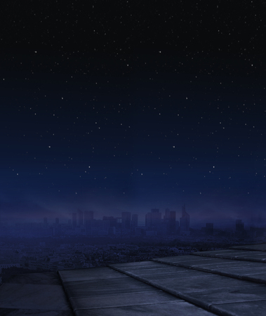Panorama picture of nightlife in the large city