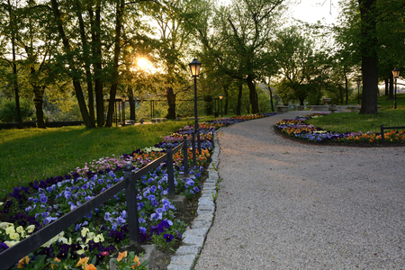 flower garden path: A beautiful oasis of greenery, colorful parks in Poland