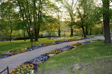 A beautiful oasis of greenery, colorful parks in Poland photo