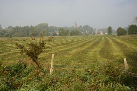 fields and meadows: Cl�sicos polacos al campo, campos, prados, lagos, colinas, estanques, molinos de viento.
