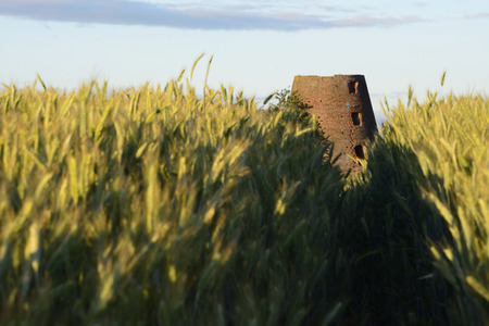 fields and meadows: Campo campos polacos cl�sicos prados lagos colinas estanques molinos de viento.