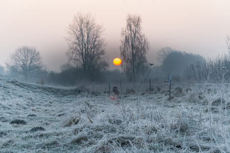 rime frost: Hoarfrost, rime and frost on the fields, meadows and ponds in the morning Stock Photo