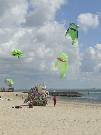A flying shark at the kite-festival on the Island of Foehr, Germany. The kite-festival takes place annually in the summertime on the North Sea Island of Foehr. The motto of this festival is