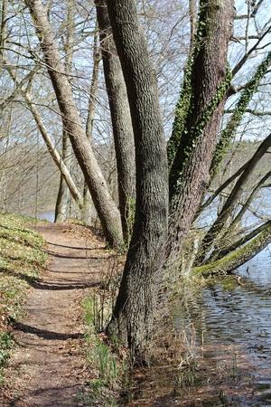 biosphere: Path at a lake in the Schorfheide-Chorin Biosphere Reserve in Brandenburg, Germany Stock Photo