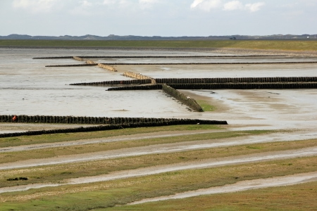 wadden sea: The Wadden Sea of the Island of Sylt at low tide Stock Photo