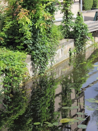 mirroring: Mirroring of a timbered house in a water
