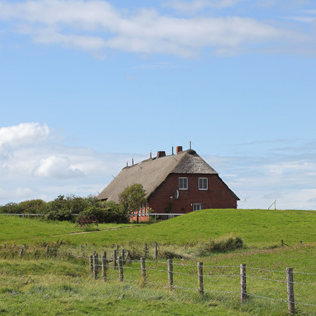 dwelling mound: Path to a thatched roof house on the small island Hallig Groede in Germany