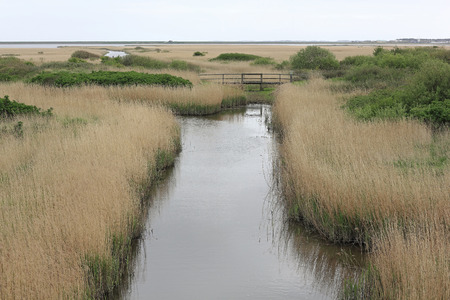 ditch: Ditch at the Rantumbecken on the island of Sylt
