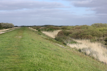 dyke: Dyke at the Bird reserve Rantumbecken on the island of Sylt Stock Photo