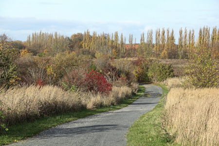 A rural path in fall colors in the north of Berlin, the German capital Stock Photo