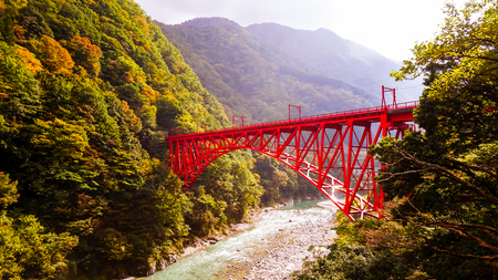 Japanese red bridge in forest