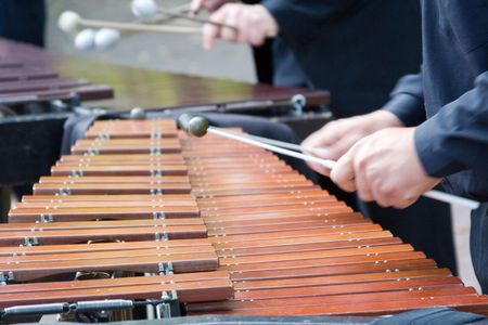 xylophone: musician playing xylophone vibraphone close-up