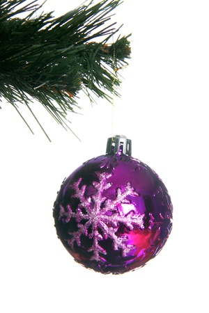 isolataion: christmas ball in fir isolated on white