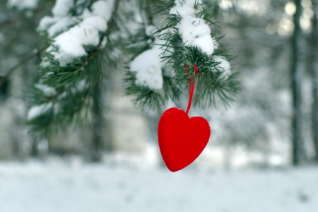 fur tree: Christmas tree with red heart