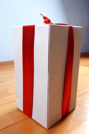 happy delivery - gift in your house for holidays Stock Photo - 15746154