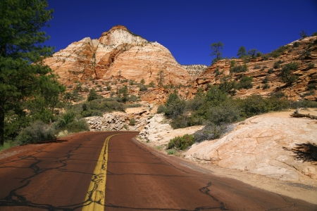 Classic nature of America - Road in Zion NP, Utah, USA   photo