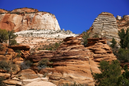 Zion National Park, Utah, USA Stock Photo - 15768999