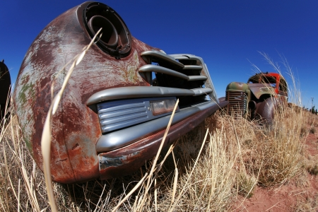 Antique american cars outdoors photo