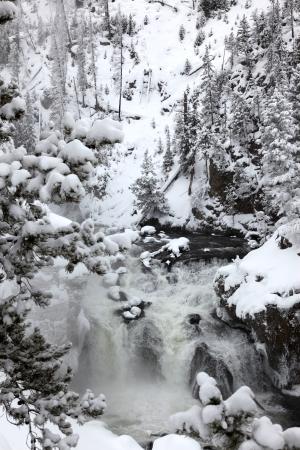 winter season at falls of Yellowstone National Park,  USA photo