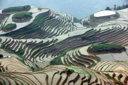gradas: Longji terrazas de arroz, provincia de Guangxi, China