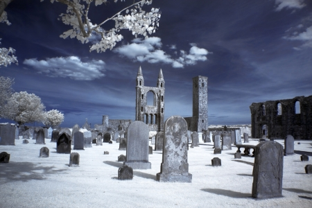 St Andrews cathedral grounds, GB Stock Photo - 15853213