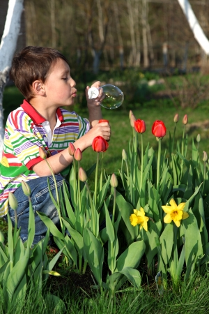 boy with tulips soap bubble photo