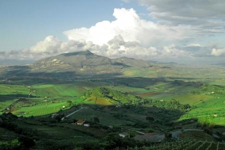 calatafimi: clasical traditional country landscape Italy ,Sicily, near Calatafimi city